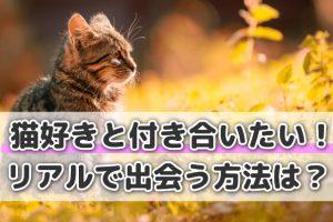 猫好きと出会う方法